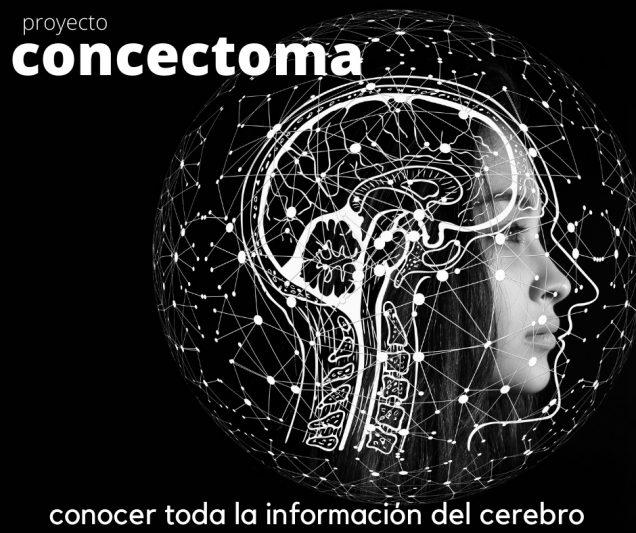 conectoma